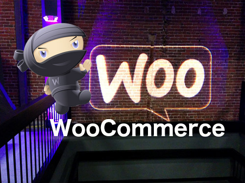 OutworX woocommerce development