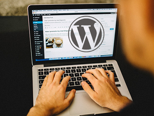wordpress development by OutworX